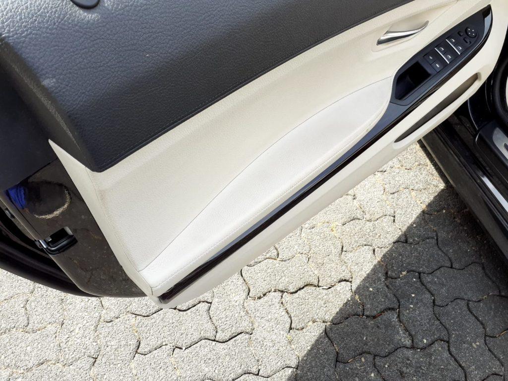 Renault Seitentür
